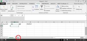Dateneingabe mit Excel - Neues Datenblatt