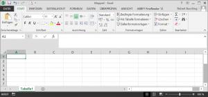 Dateneingabe mit Excel - Ausgangssituation