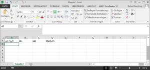 Dateneingabe mit Excel - Spaltenüberschrift