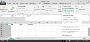 Dateneingabe mit Excel - Auswahl der Option Datenüberprüfung