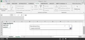 Dateneingabe mit Excel - Zuordnung von Variablenlabeln